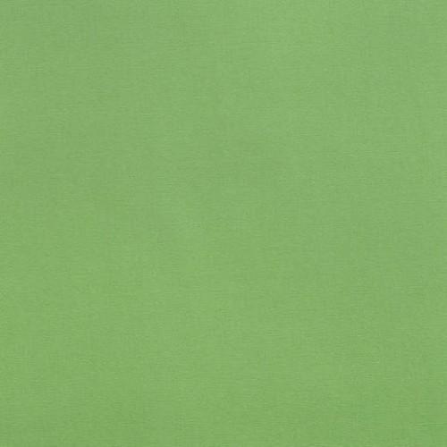 Декоративная ткань зелёное яблоко - 268818