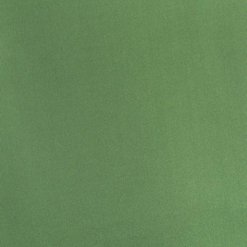 Болония трава - 83478